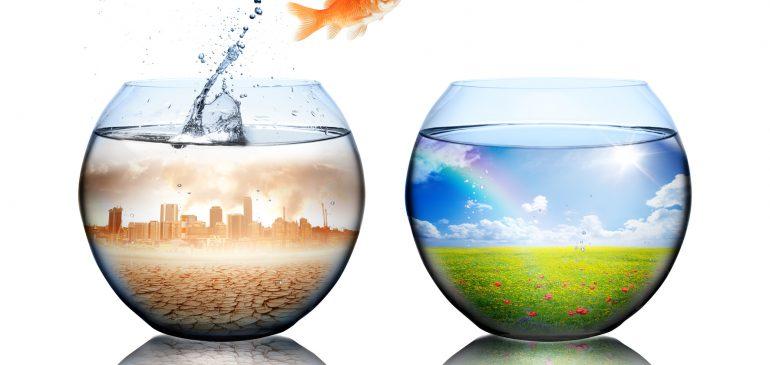 Refonte de site web : un plan en 4 étapes pour sauver votre SEO